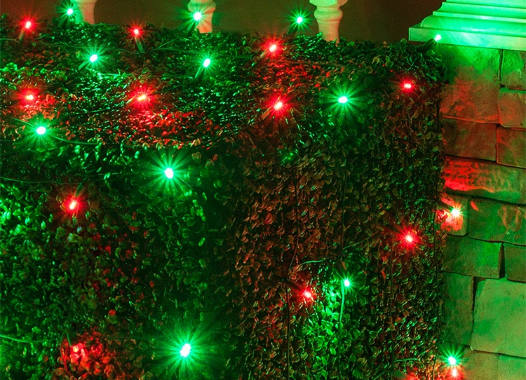 red and green christmas net lights