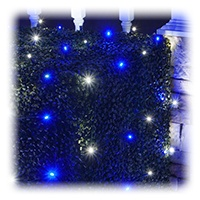 Blue and White LED Net Lights