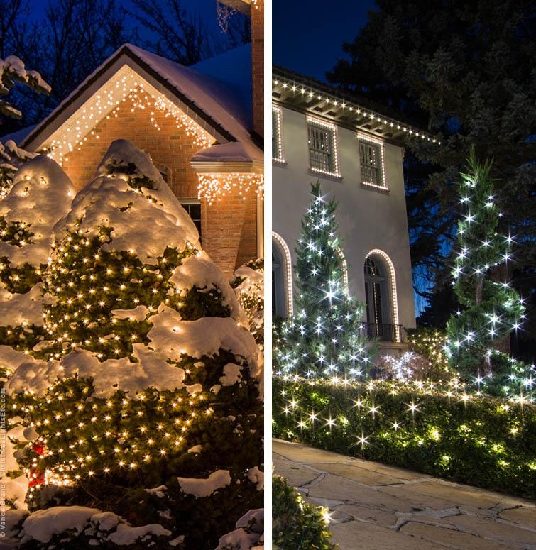 Net Light Patterns vs Random Light Designs on Bushes