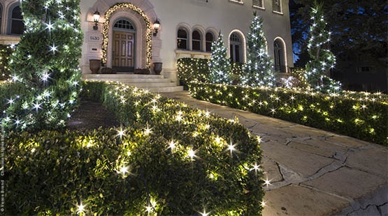 Tips for Wrapping Bushes with Net Lights
