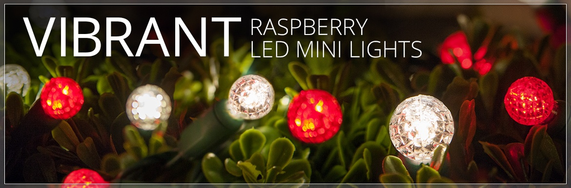 Raspberry G12 LED Mini Lights
