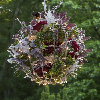 Hanging Christmas Flower Light Ball