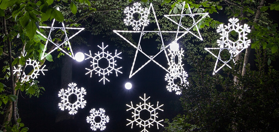 Star Lights & Snowflake Christmas Decorations