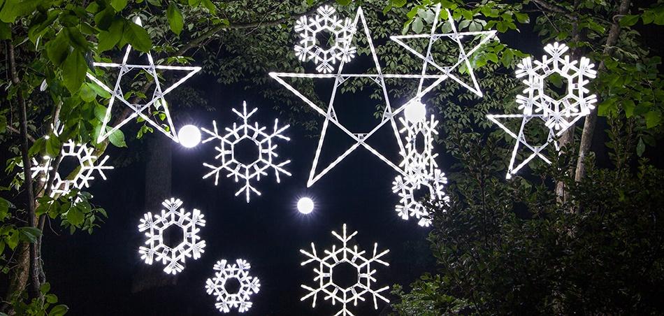 Star Lights & Snowflake Christmas Decorations