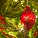 Recommended Number of Ornaments for Trees