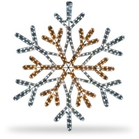 Warm White and Cool White LED Snowflake Light
