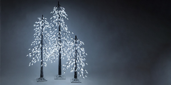 Lighted Branches and Trees