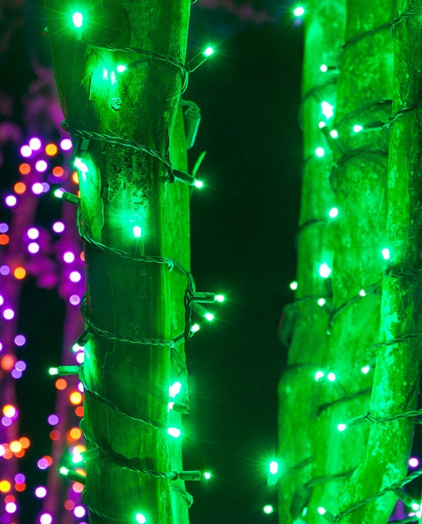 Green LED Light Wrapped Trees