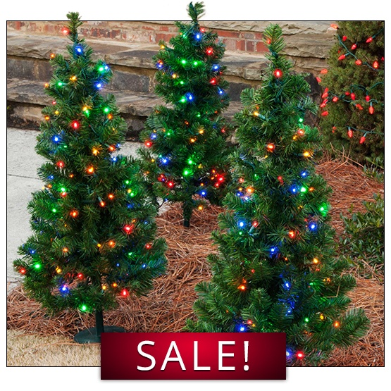 Walkway Trees for Sale