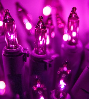 Purple Incandescent Mini Lights