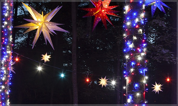 Red, White, & Blue Tree Lights