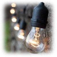 A15 Clear Outdoor Patio Lights