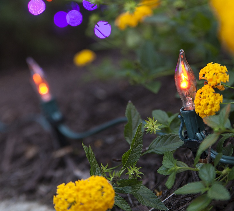 Flicker Flame Bulb Halloween Walkway Lights