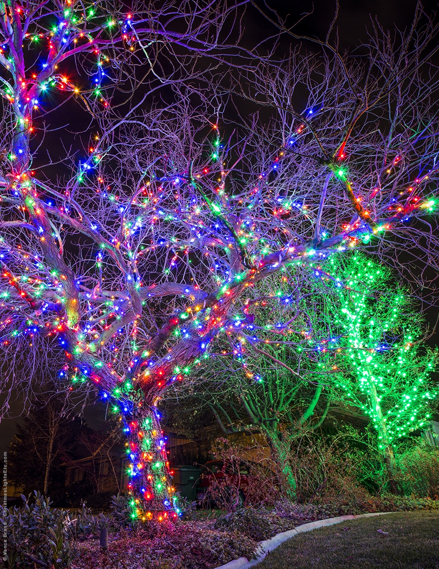 Multicolor LED Light Wrapped Tree for Christmas