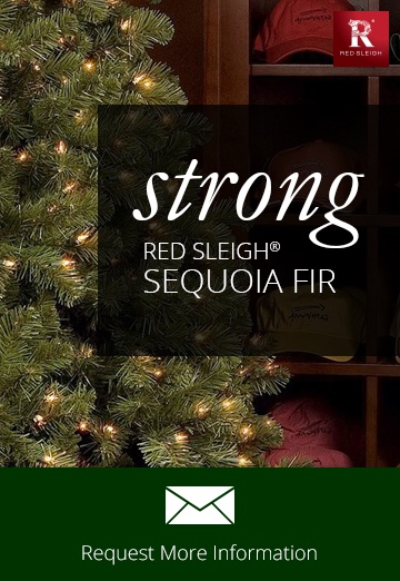 Sequoia Fir Commercial Christmas Trees
