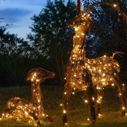 Outdoor Lighted Reindeer