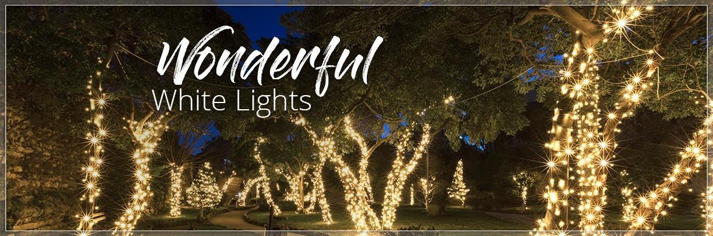 Wonderful White Lights