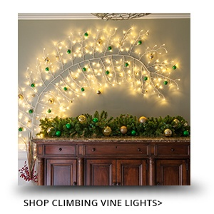 Climbing Vine Lighted Branches