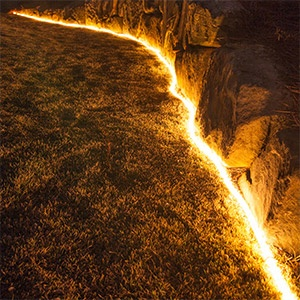 Rope Light Pathway and Landscape Lighting