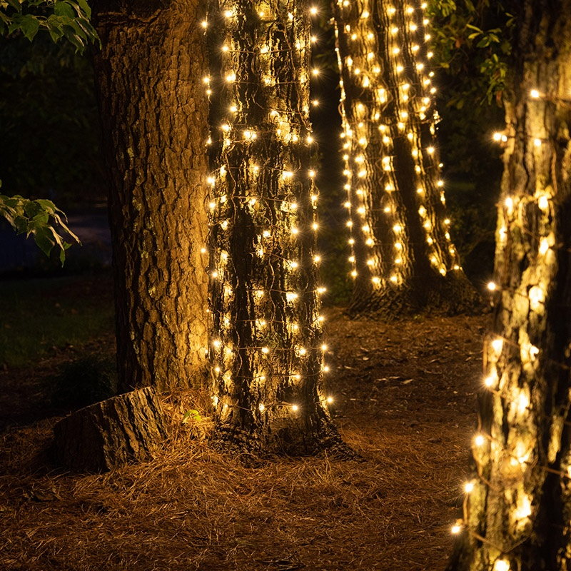 Trees Wrapped with Trunk Wrap Lights