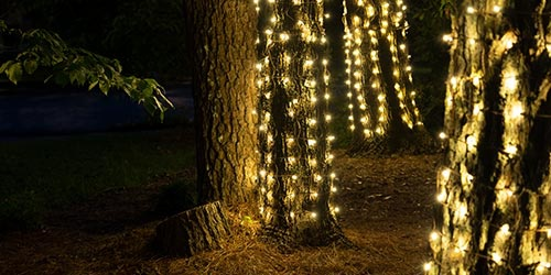 Net Lights for Trees