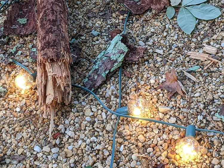 Shatterproof FlexFilament LED Light Bulbs Not Broken After Tree Falls