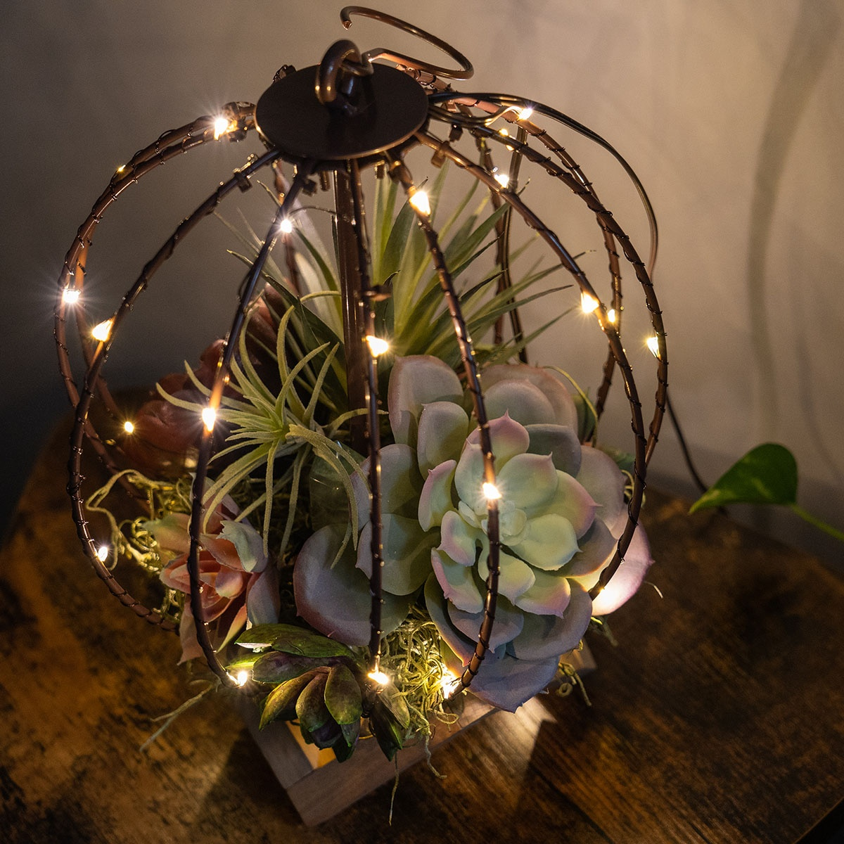 DIY Terrarium Light Ball With Succulents