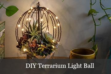 DIY Terrarium Light Ball
