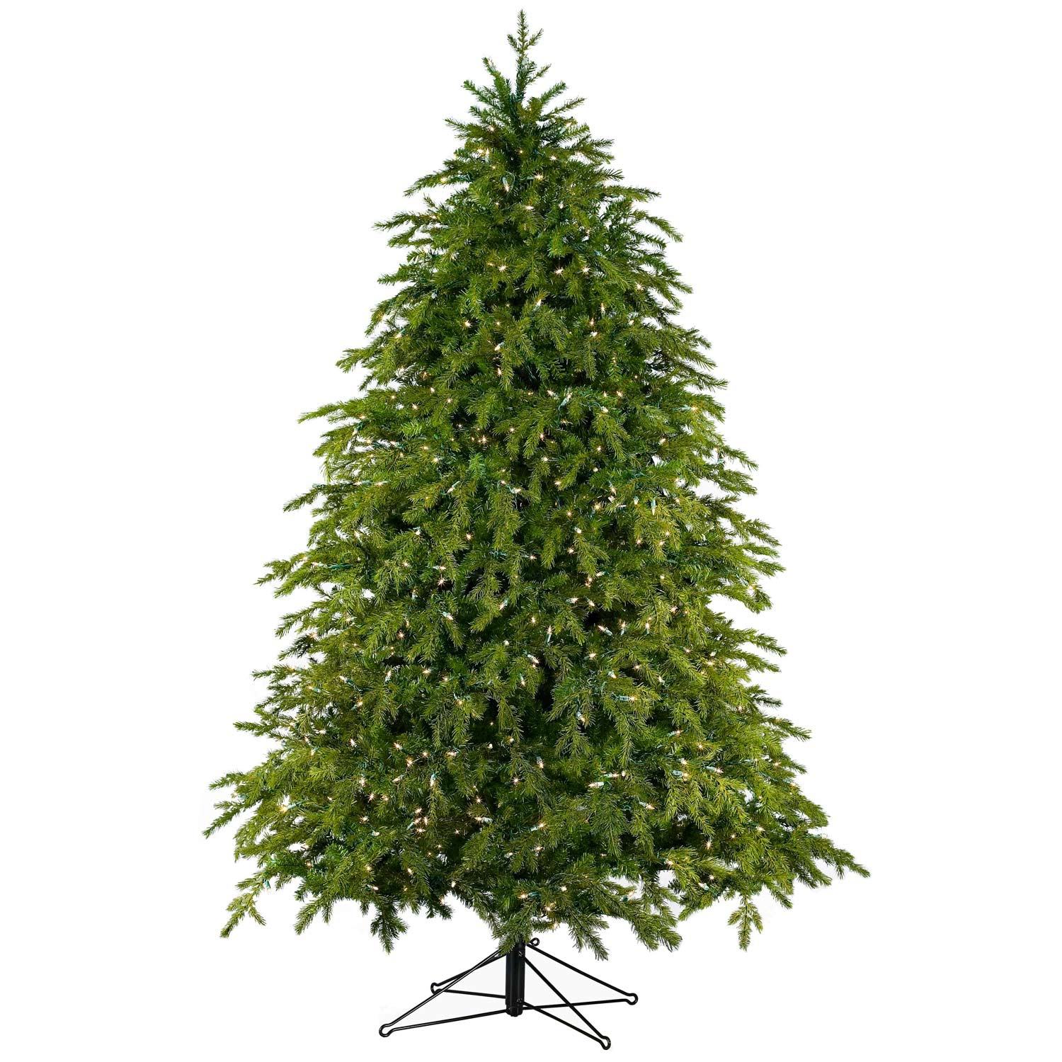 Live Christmas Tree For Sale