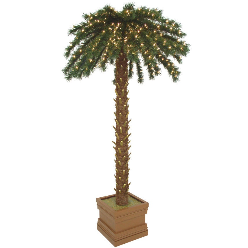 Lighted Palm Trees 7 5 Empire Pine Coconut Palm Tree