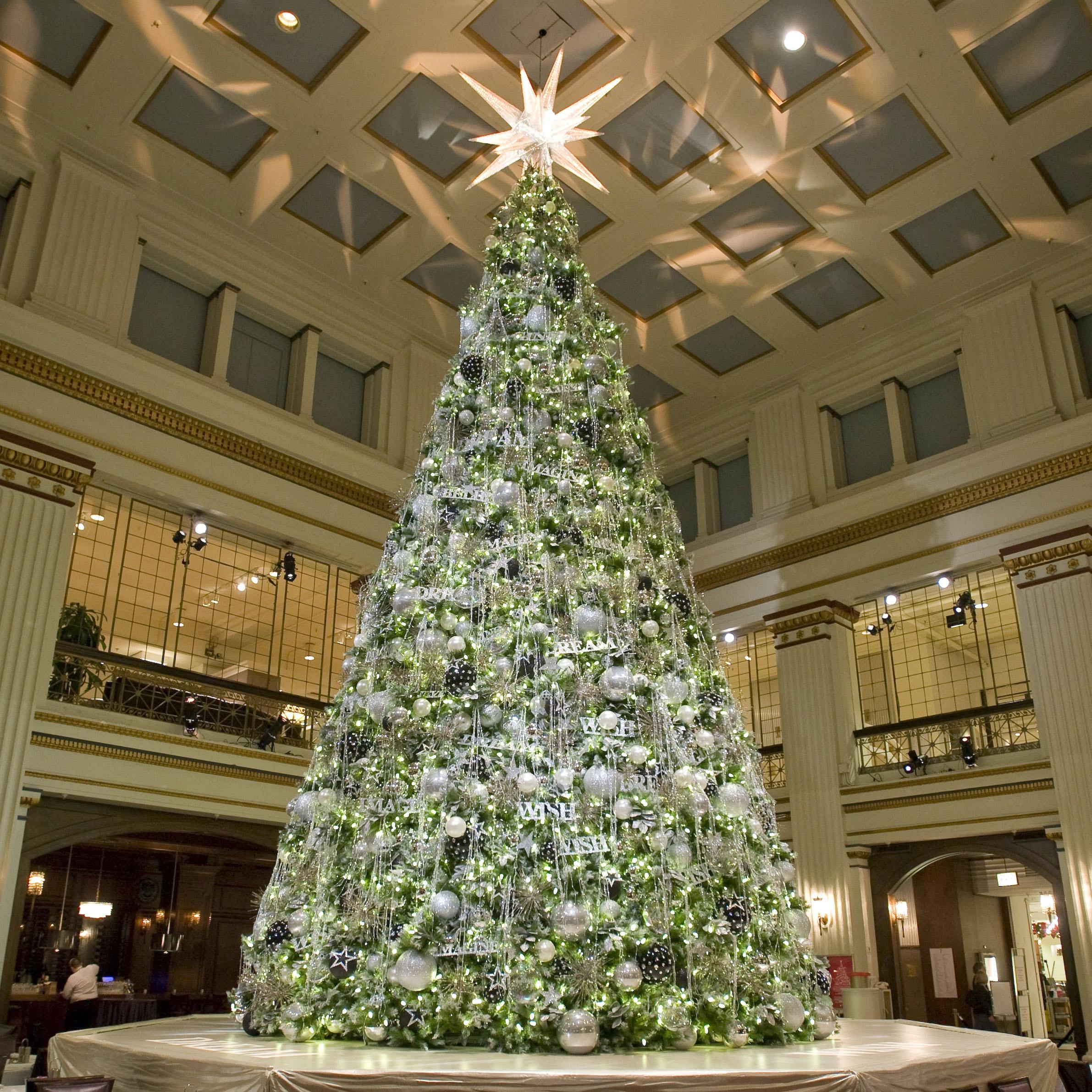 Giant Trees - 29\' Giant Everest Fir Full Prelit Commercial Tree