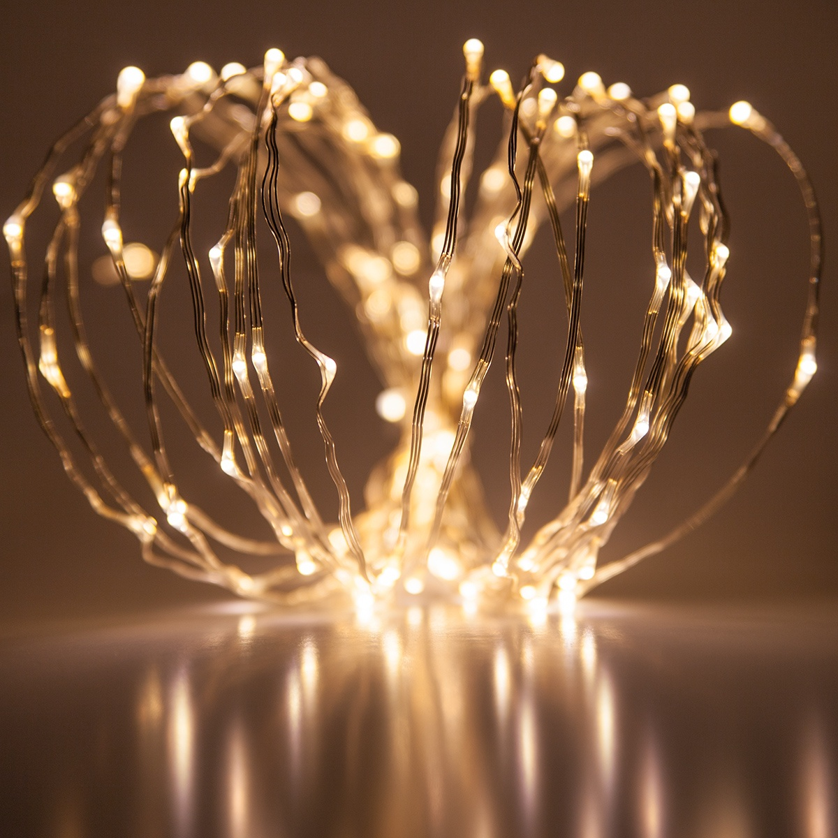 Novelty Lights 20 Warm White Led Fairy Light String