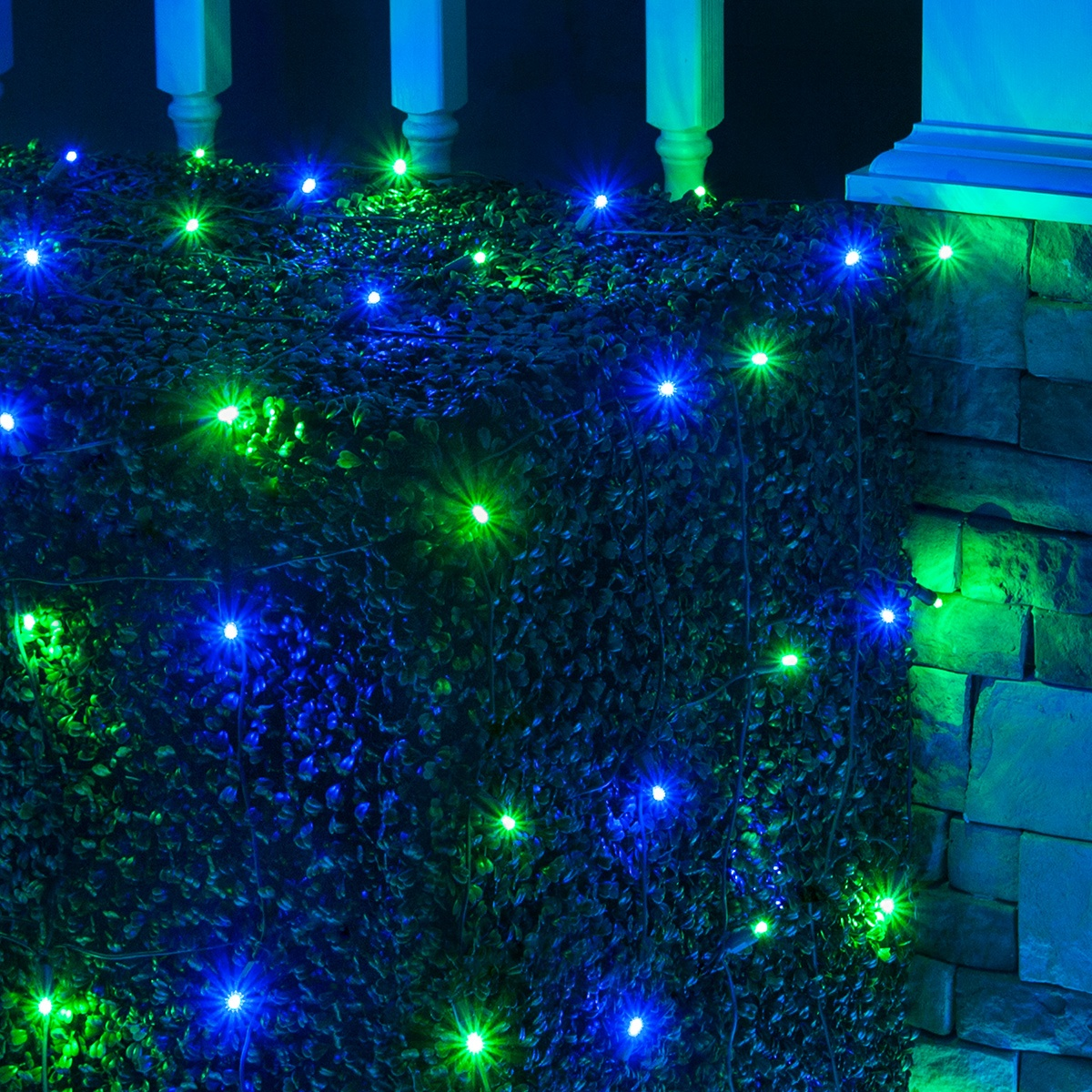 blue and green christmas net lights