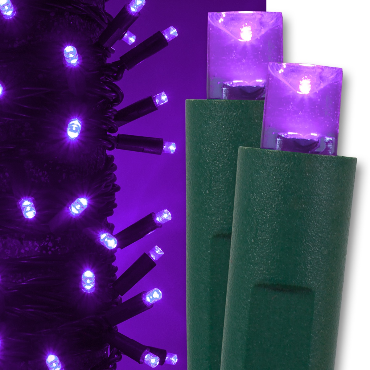 Wide Angle 5mm Led Lights 50 Purple Christmas Lights