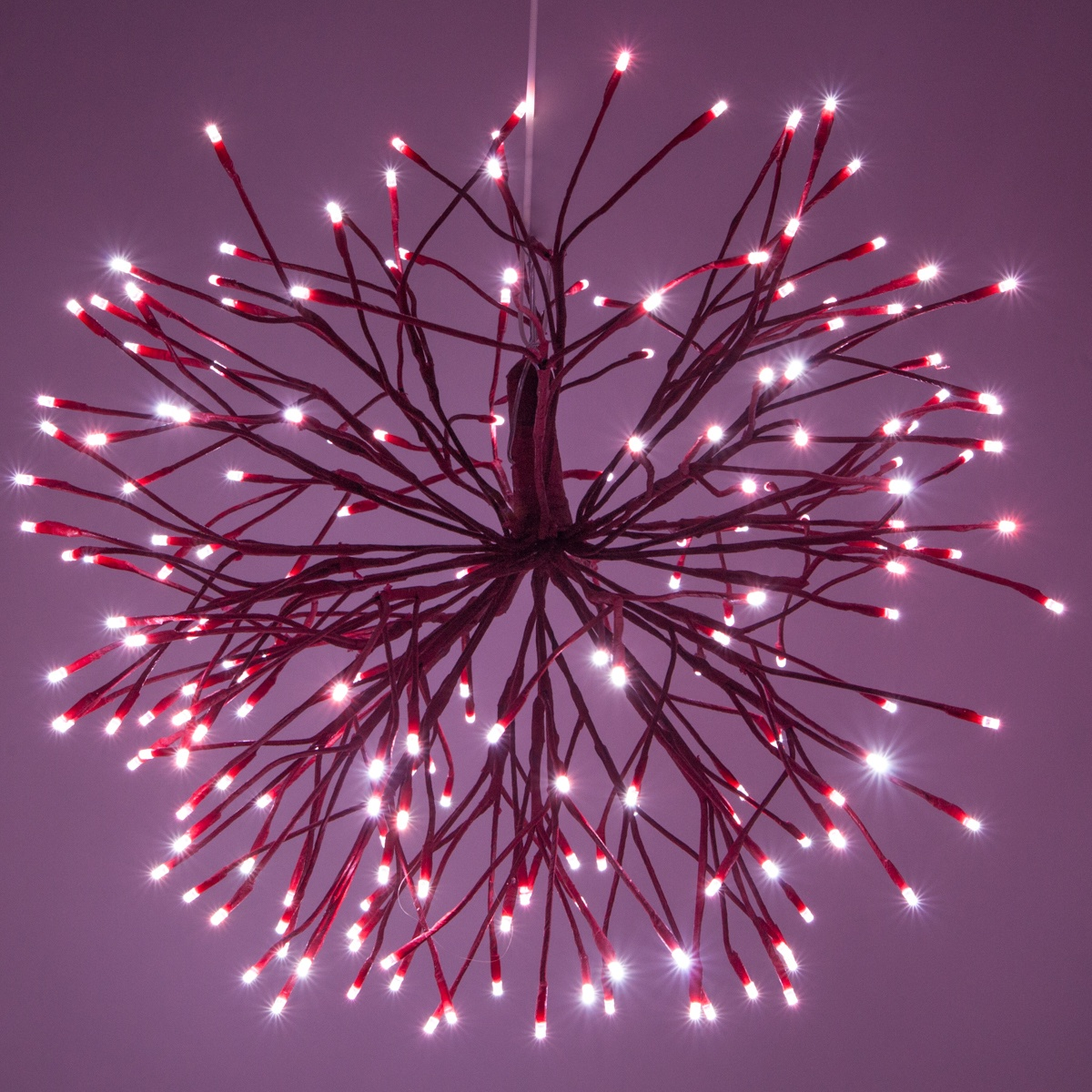 Red Starburst Lighted Branches With Red Cool White Led