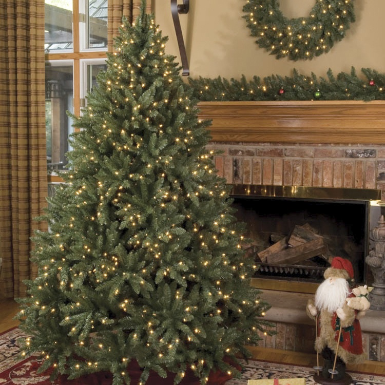 Douglas Fir Unlit Tree - Christmas Lights, Etc