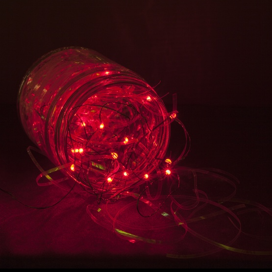 Battery Operated Lights 18 Red Led Fairy Green Wire