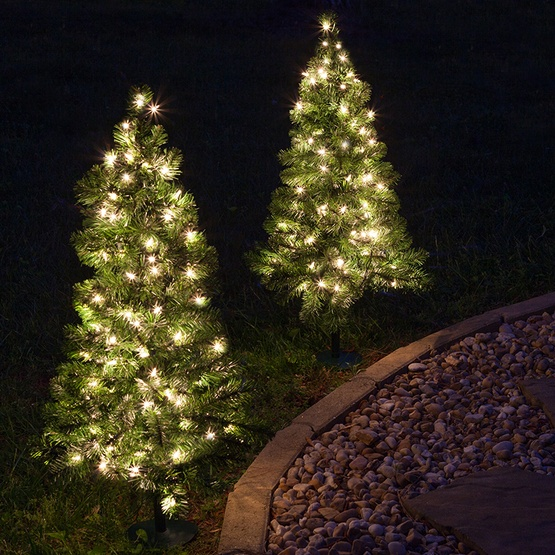 2 walkway pre lit winchester fir tree 50 clear lamps - Small Pre Decorated Christmas Trees
