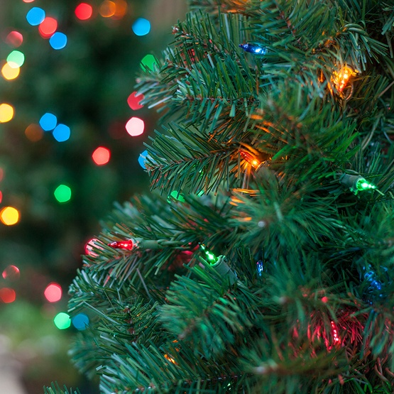 3 Walkway Pre Lit Winchester Fir Tree 100 Multicolored Lamps
