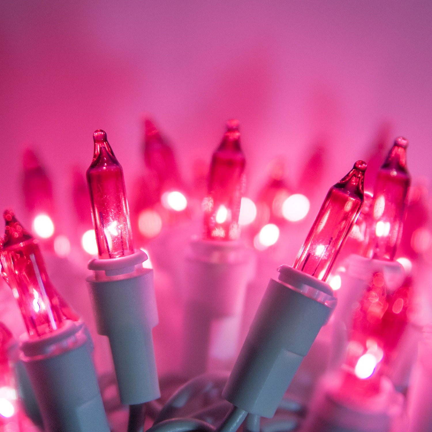 White Christmas Lights - 100 Pink Christmas Tree Mini Lights, 2.5 ...