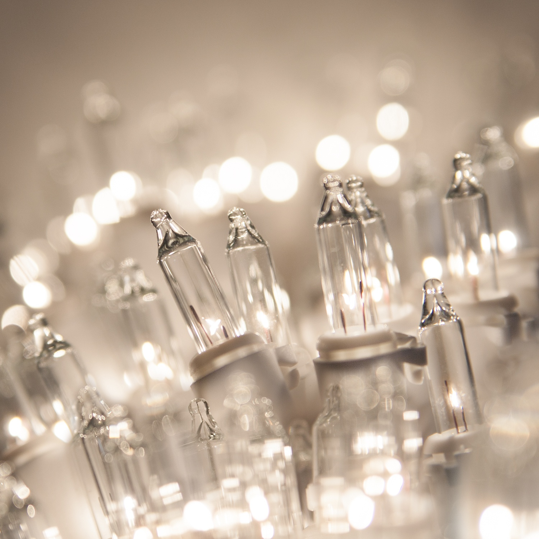 White Christmas Lights - 50 Clear Mini Christmas Lights, 8 ...