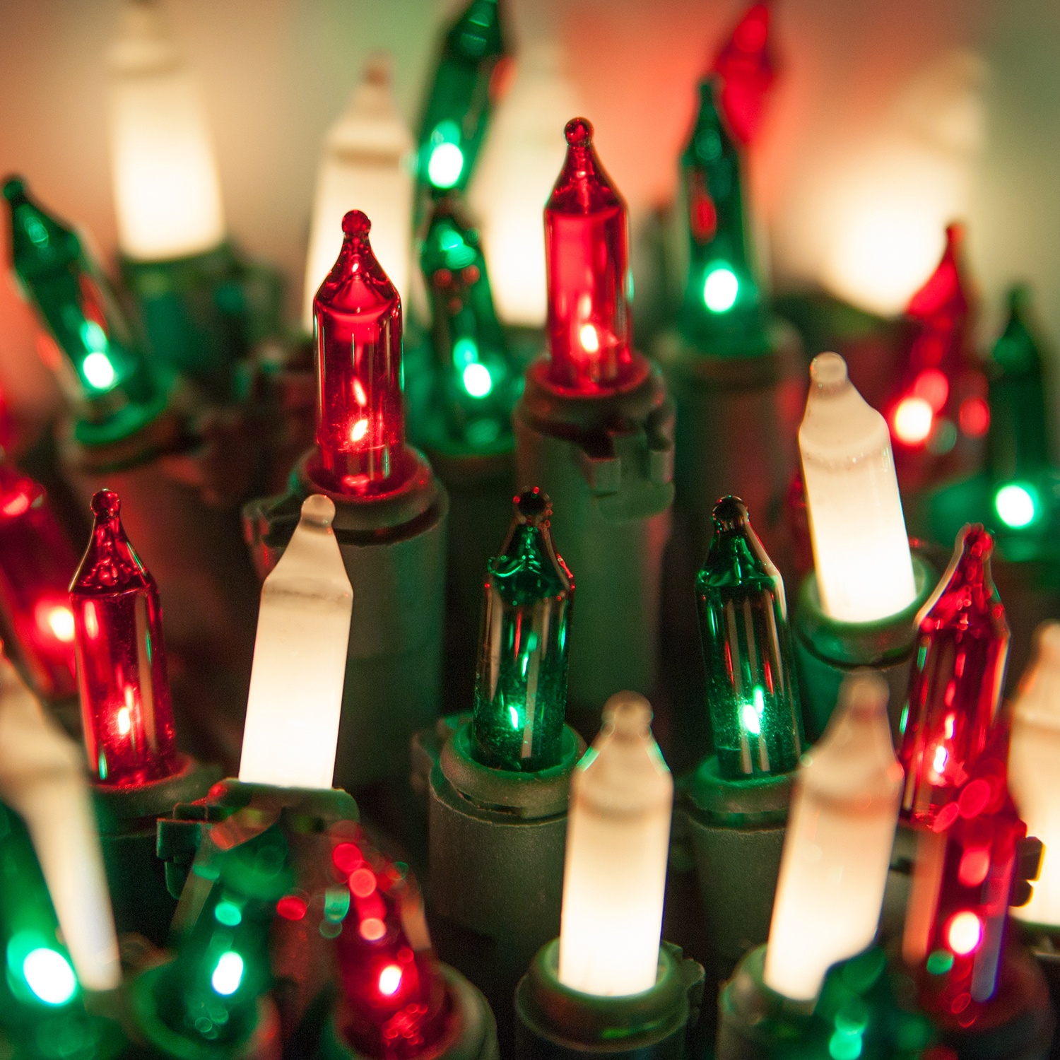 Christmas Mini Lights - Commercial 100 Red, Green, White Frost ...