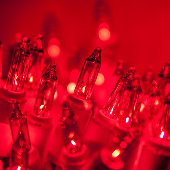 50 red mini christmas lights 6 spacing premium white wire - Red Christmas Tree Lights