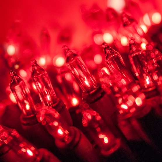 140 red chasing mini lights 4 spacing green wire