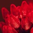 """25 C7 Red LED Christmas Lights, 8"""" Spacing"""