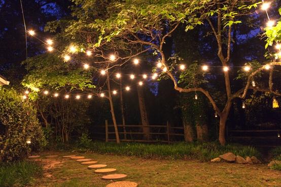 25 G40 Clear Patio String Lights On Green Wire
