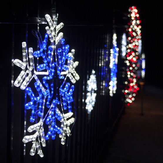 Amazon.com: Sienna Set of 30 Blue and Pure White LED ... |Snowflake Blue And White Lights