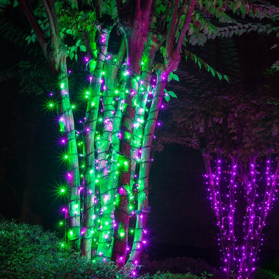 Wide Angle 5mm Led Lights 70 5mm Purple Green Led