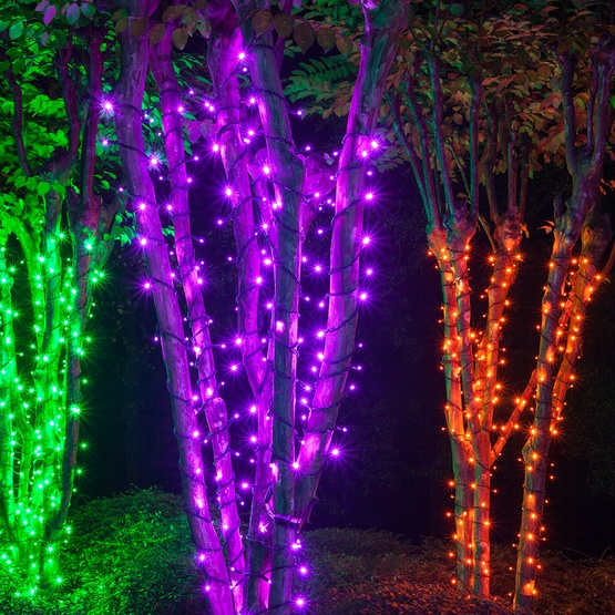 70 5mm purple led halloween lights 4 spacing black wire