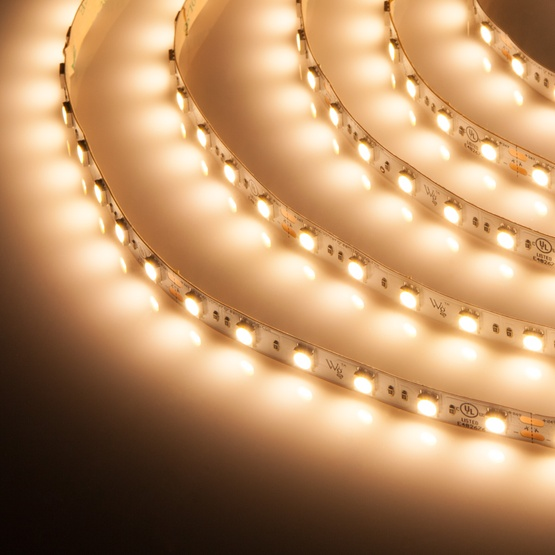 Champagne warm white 24v high output led strip light mozeypictures Image collections